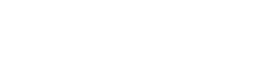 Digital Leaders Initiative